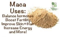 herbal make increase estrogen