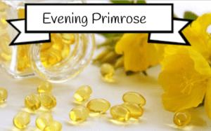 evening primrose for estrogen