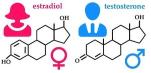 estradiol for mtf transgenders