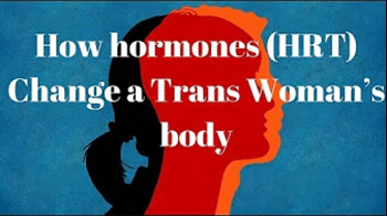How Hormones (HRT) Change a Trans Woman's Body
